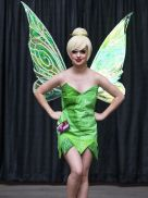 lil fairy tinkerbell
